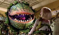 AS Films Presents: Little Shop of Horrors on Fall Family Weekend